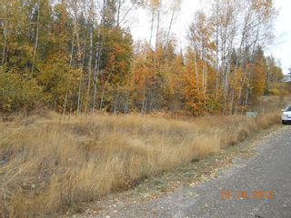 Photo 7: 3 2481 Squilax Anglemont Road in Lee Creek: Land Only for sale : MLS®# 10055686