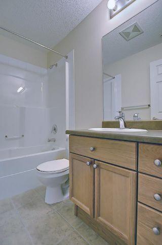 Photo 39: 201 4407 23 Street in Edmonton: Zone 30 Condo for sale : MLS®# E4254389