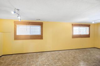 Photo 23: 128 Dovertree Place SE in Calgary: Dover Semi Detached for sale : MLS®# A1075565