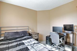 Photo 25: 131 Bridlewood Circle SW in Calgary: Bridlewood Detached for sale : MLS®# A1126092