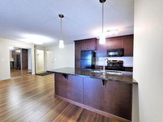 Photo 6: 438 6076 SCHONSEE Way in Edmonton: Zone 28 Condo for sale : MLS®# E4260047