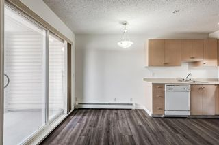 Photo 18: 3209 1620 70 Street SE in Calgary: Applewood Park Apartment for sale : MLS®# A1116068