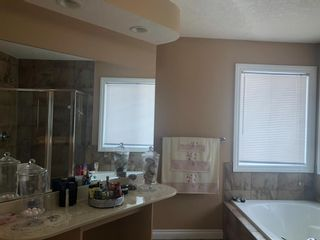 Photo 19: 113 Seagreen Manor: Chestermere Detached for sale : MLS®# A1119005