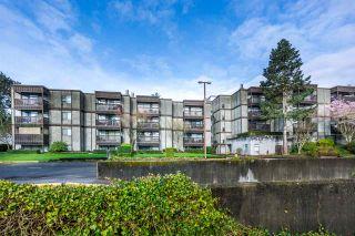 Photo 1: 405 13501 96 AVENUE in Surrey: Whalley Condo for sale (North Surrey)  : MLS®# R2212876