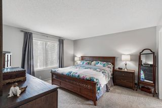Photo 16: 296 Mt. Brewster Circle SE in Calgary: McKenzie Lake Detached for sale : MLS®# A1118914