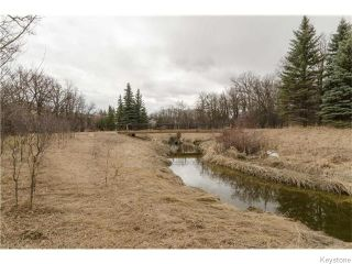 Photo 18: 88 Brahms Bay in Winnipeg: North Kildonan Residential for sale (North East Winnipeg)  : MLS®# 1607582