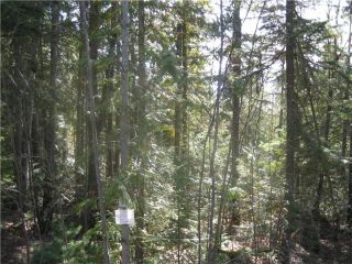 Photo 2: 84 Anglemont Way in Anglemont: North Shuswap Land Only for sale (Shuswap)  : MLS®# 10058557