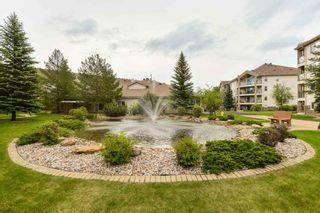 Photo 36: 203 8922 156 Street in Edmonton: Zone 22 Condo for sale : MLS®# E4248729