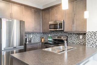 Photo 10: 306 2588 ANDERSON Way in Edmonton: Zone 56 Condo for sale : MLS®# E4264419