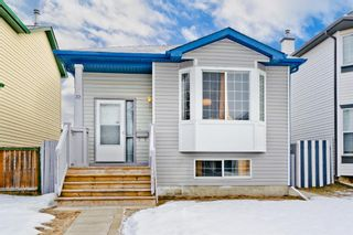 Main Photo: 32 Martin Crossing Crescent NE in Calgary: Martindale Detached for sale : MLS®# A1106021