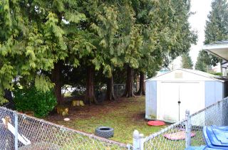 """Photo 12: 14180 109 Avenue in Surrey: Bolivar Heights House for sale in """"Bolivar Heights"""" (North Surrey)  : MLS®# R2144772"""