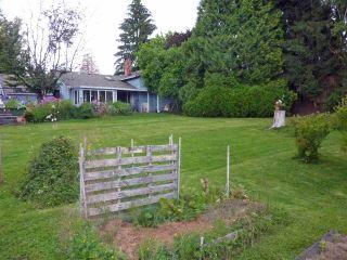 Photo 4: 20292 PATTERSON Avenue in Maple Ridge: Southwest Maple Ridge House for sale : MLS®# R2087703
