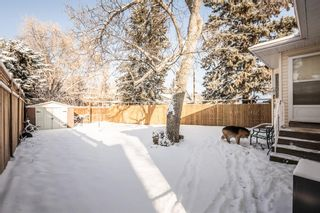 Photo 23: 510 Macleod Trail SW: High River Detached for sale : MLS®# A1065640
