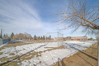 Photo 43: 704 Imperial Way SW in Calgary: Britannia Detached for sale : MLS®# A1081312