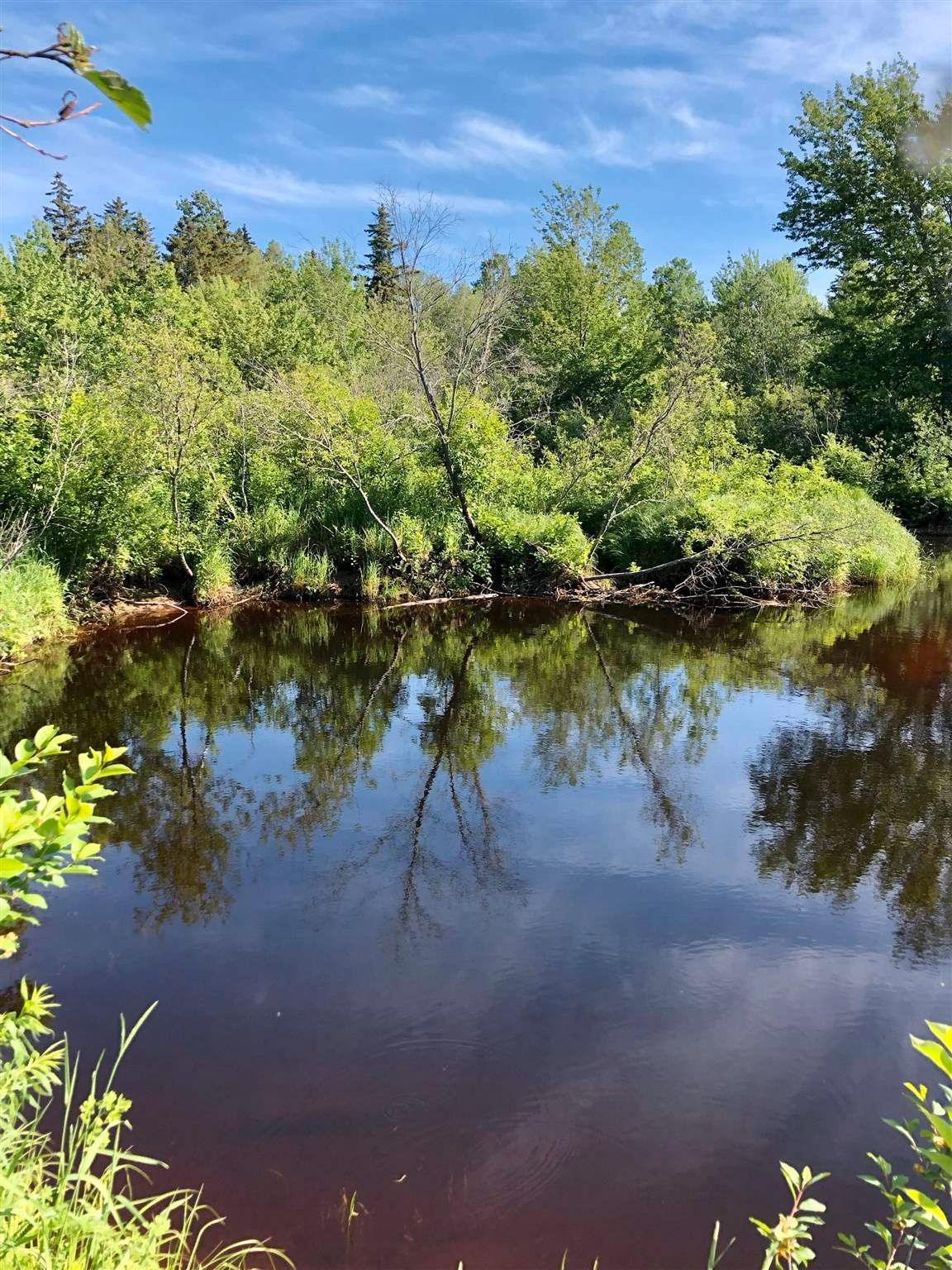 Main Photo: River John Road in Sundridge: 108-Rural Pictou County Vacant Land for sale (Northern Region)  : MLS®# 202115166