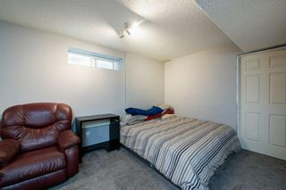 Photo 26: 26 Mt Aberdeen Link SE in Calgary: McKenzie Lake Detached for sale : MLS®# A1095540