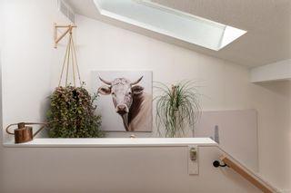 Photo 17: 36 Falstaff Pl in : VR Glentana House for sale (View Royal)  : MLS®# 875737