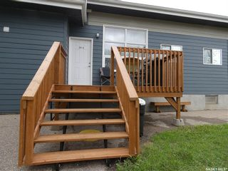 Photo 45: 201 Francis Street in Viscount: Residential for sale : MLS®# SK869823