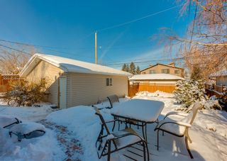 Photo 31: 236 25 Avenue NE in Calgary: Tuxedo Park Detached for sale : MLS®# A1069084