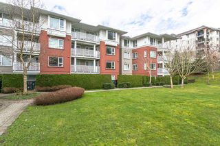 """Photo 14: 314 4723 DAWSON Street in Burnaby: Brentwood Park Condo for sale in """"COLLAGE BY POLYGON"""" (Burnaby North)  : MLS®# R2149992"""