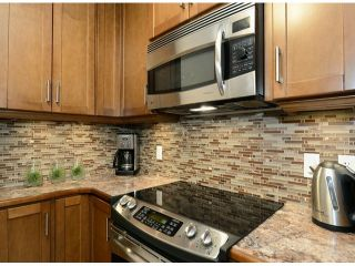 """Photo 20: 308 1508 MARINER Walk in Vancouver: False Creek Condo for sale in """"MARINER POINT"""" (Vancouver West)  : MLS®# V1062003"""