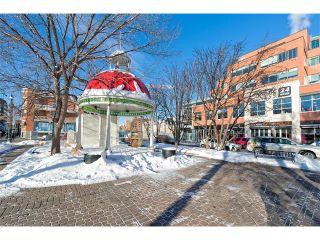 Photo 25: 302 923 15 Avenue SW in Calgary: Beltline Condo for sale : MLS®# C4093208