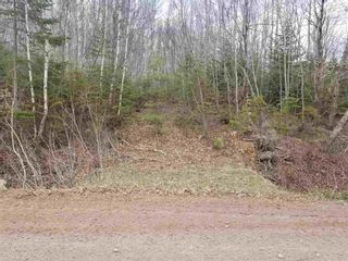 Photo 3: Campbell Hill Road in Campbell Hill: 108-Rural Pictou County Vacant Land for sale (Northern Region)  : MLS®# 202109771