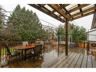 Photo 2: 11801 230TH Street in Maple Ridge: East Central House for sale : MLS®# R2150643