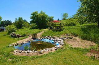 Photo 9: 122 Indian Road in Asphodel-Norwood: Rural Asphodel-Norwood House (Bungalow) for sale : MLS®# X5254279