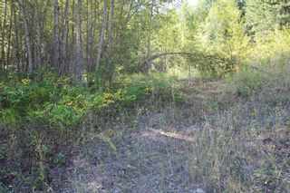 Photo 11: 26 2481 Squilax Anglemont Road: Lee Creek Land Only for sale (Shuswap)  : MLS®# 10116283