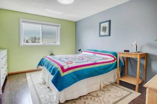 Photo 12: 3 Maple Way SE: Airdrie Detached for sale : MLS®# A1100248