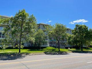 Photo 2: 302 8715 82 Avenue in Edmonton: Zone 17 Condo for sale : MLS®# E4248630