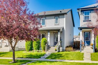 Photo 29: 162 Prestwick Rise SE in Calgary: McKenzie Towne Detached for sale : MLS®# A1050191