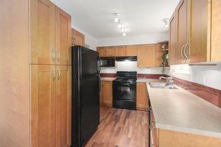 Photo 10: 207 15621 MARINE Drive: White Rock Condo for sale (South Surrey White Rock)  : MLS®# R2578326