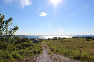 Photo 3: 214 New Harbour Road in Blandford: 405-Lunenburg County Vacant Land for sale (South Shore)  : MLS®# 202108758