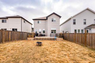 Photo 42: 6120 18 Avenue in Edmonton: Zone 53 House for sale : MLS®# E4254367