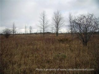 Photo 11: 2489 Concession Road 3 Road in Ramara: Brechin Property for sale : MLS®# X3371303