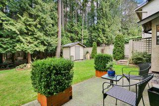 Photo 19: 6099 BRIARWOOD CRESCENT in Delta: Sunshine Hills Woods House for sale (N. Delta)  : MLS®# R2239945
