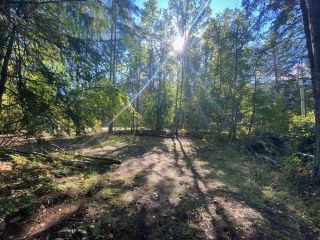 Photo 18: 4665 CRESCENT ROAD in Nelson: Vacant Land for sale : MLS®# 2461363