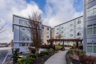 "Photo 16: 131 13728 108 Avenue in Surrey: Bolivar Heights Condo for sale in ""Quattro 3"" (North Surrey)  : MLS®# R2141729"
