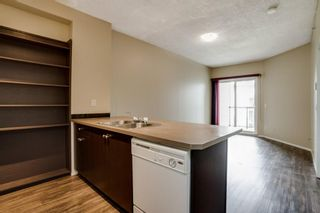 Photo 6: 3309 73 Erin Woods Court SE in Calgary: Erin Woods Apartment for sale : MLS®# A1100323