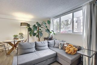 Photo 7: 107 110 24 Avenue SW in Calgary: Mission Apartment for sale : MLS®# A1098255