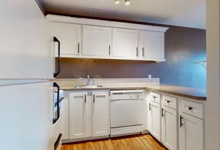 Photo 11: 38 7172 Coach Hill Road SW in Calgary: Coach Hill Row/Townhouse for sale : MLS®# A1059629