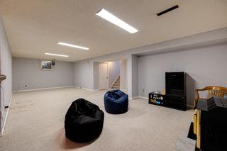 Photo 28: 15011 64 Street in Edmonton: Zone 02 House for sale : MLS®# E4253519