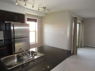 Photo 7: 402 11812 22 Avenue in Edmonton: Zone 55 Condo for sale : MLS®# E4266126