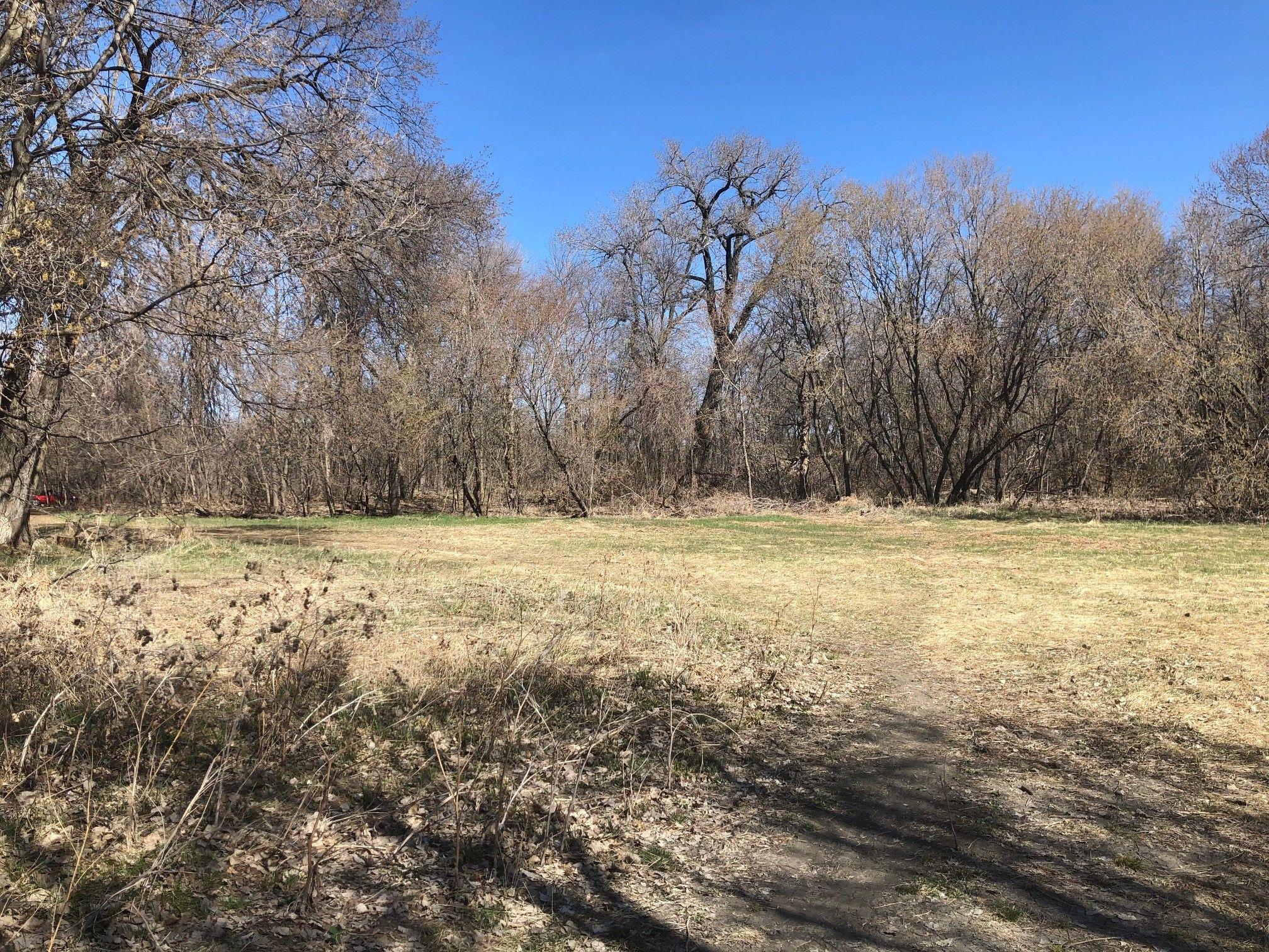 Former riverside homestead site