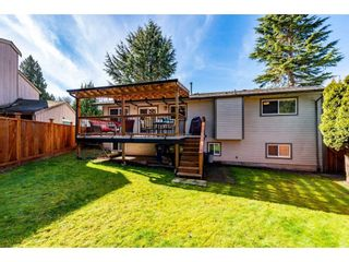 Photo 34: 3710 ROBSON Drive in Abbotsford: Abbotsford East House for sale : MLS®# R2561263