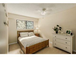 Photo 16: 6779 CARNCROSS Crescent in Delta: Sunshine Hills Woods House for sale (N. Delta)  : MLS®# F1446998