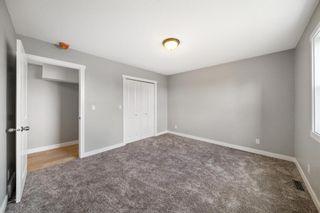 Photo 18: 28 Falton Mews NE in Calgary: Falconridge Detached for sale : MLS®# A1144383
