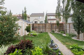 Photo 35: 172 COPPERFIELD Rise SE in Calgary: Copperfield Detached for sale : MLS®# C4201134